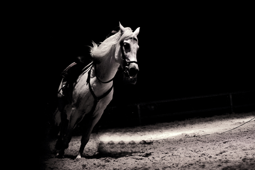 SARAY-MARTIN-SANABRIA-caballo54a1de2ea3a5d